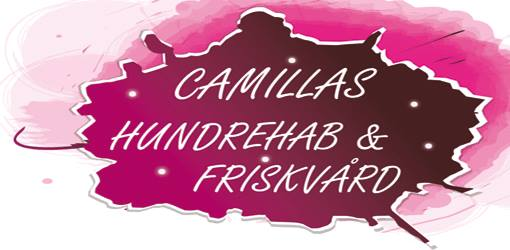 CamilasRehab