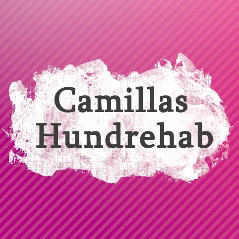camillas_rebab