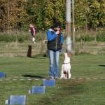 Tävling 20121028195