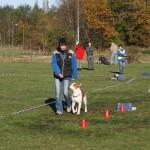 Tävling 20121028200