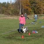 Tävling 20121028211