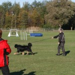 Tävling 20121028274