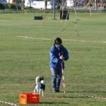 Tävling 20121028340